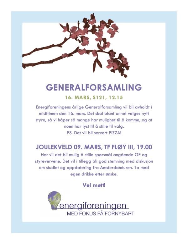Energiforeningens Generalforsamling